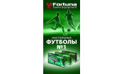 Рекламный стенд Настольные футболы №1